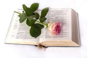 bible-1108074__180